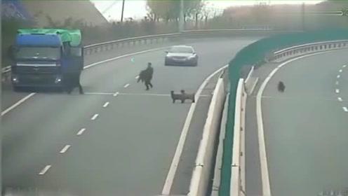 大货车突然停在高速,交警发现不对劲,查看监控后无语了