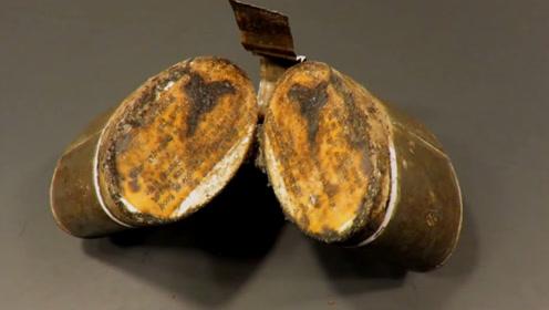 1899年的牛肉罐头是什么味道?老外大胆尝试,网友:救护车已备好!