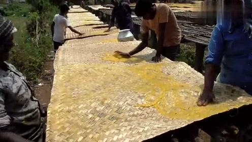 长见识了,原来印度人是这样加工芒果制品的,网友:很原汁原味!