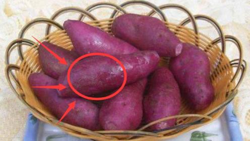 """营养专家:红薯被誉为""""冠军蔬菜"""",医生:这类人最好1口都别碰!"""