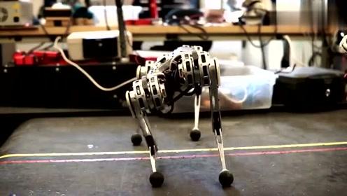 黑科技!美国发明先进的仿生机器人,后空翻轻而易举!