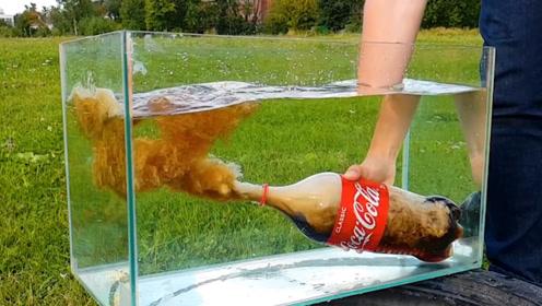 可乐掺水会发生什么,老外在水中打开可乐,水竟然躲着可乐走