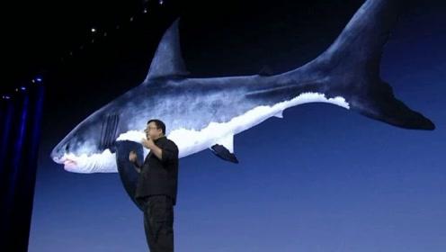 """""""老人与海""""黑科技发布会主角,原来是一块能抗菌的仿鲨鱼皮材料!"""