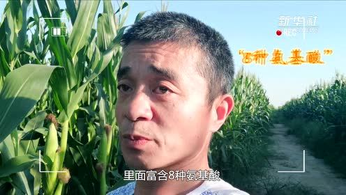 2019年12月06日 中国时间