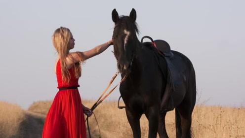 美女捡到一匹小黑马,结果越养越不对劲,专家:你发财了!