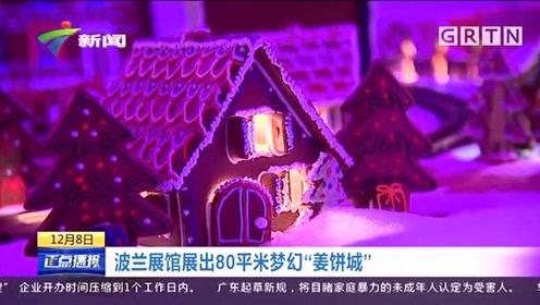 """童年梦想!波兰展馆展出80平米梦幻""""姜饼城"""",让人看到流口水"""