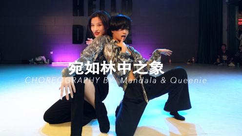 HELLODANCE课堂 张艺凡&王涛-宛如林中之象