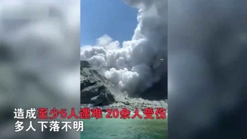 新西兰怀特岛火山爆发致5死20余伤 多名游客下落不明