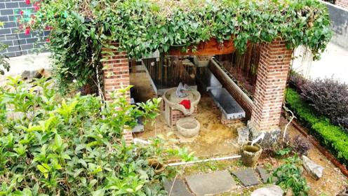 羡慕:在农村有座这样的房子真是享受