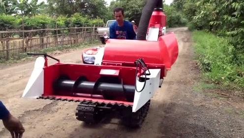 迷你型水稻收割机,下田测试性能