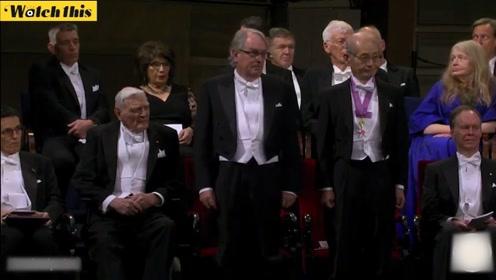2019年诺贝尔化学奖颁奖典礼现场 三名教授共同获奖
