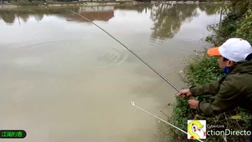 大鱼一咬钓小伙还不敢硬拉,一条三斤的大鲤鱼就折腾了一下午