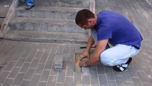 地底出来叫声,善良小伙徒手挖地砖,竟挖出一只怀孕母狗