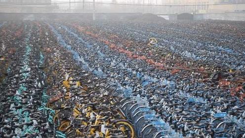 """航拍!济南万余辆共享单车堆""""坟场"""",单车公司称不知情"""