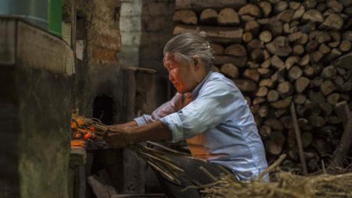 农村柴火做饭真的污染环境?农民问了2句实在话,让专家无话可说