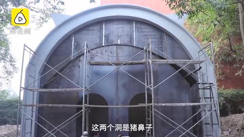 12岁猪坚强将乔迁新家:独栋别墅养老,50平米,独享2台空调