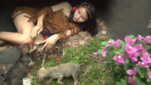 美女在野外建了套房子,每天有小狗陪伴,日子过得很幸福