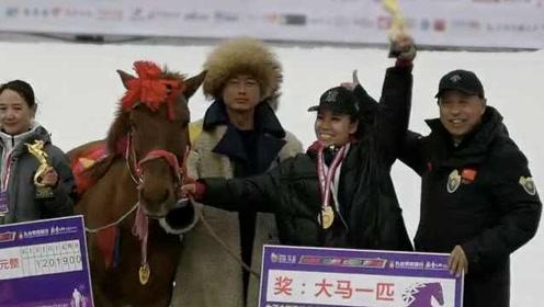 东北雪地马拉松,冠军获奖一匹马:我打算骑回家