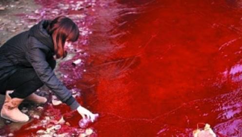 朝鲜边境诡异的河流,一片红色,还散发阵阵恶臭!