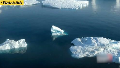 格陵兰岛冰层加速消融 过去27年来已流失3.8万亿吨冰