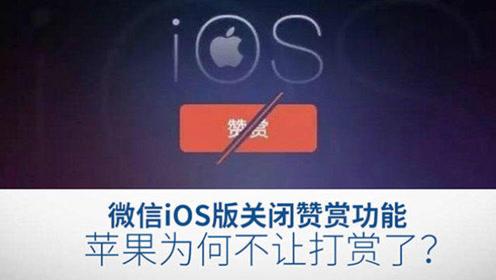 微信iOS版关闭赞赏功能,苹果为何不让打赏了?
