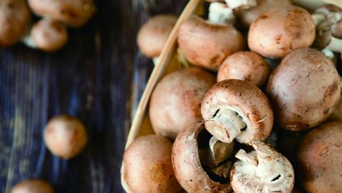 女人秋冬必吃的一种食材,它被誉为真菌皇后,健脾祛湿还养颜!