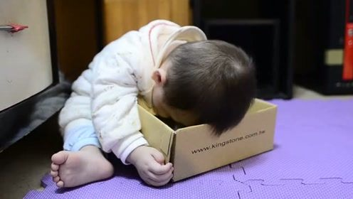 宝宝玩耍时不小心睡着,恰巧头落在箱子里,接下反应笑坏爸妈!