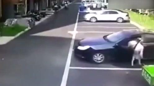 女司机又秀出新高度,没上车就把车撞了!