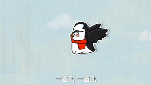 无奇不有!世界上竟然有会飞的企鹅?