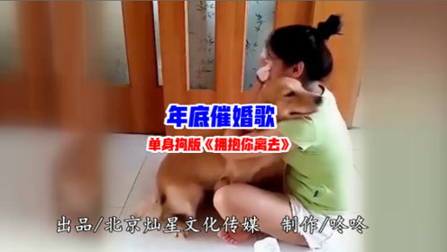 《年底催婚歌》爆火网络 星爷张柏芝催泪助演
