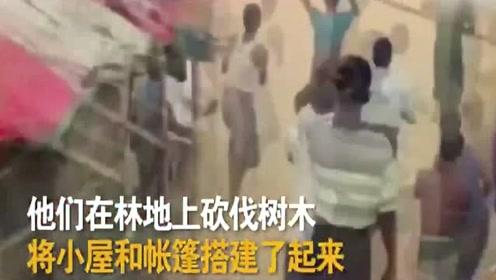 栖息地破坏 愤怒大象冲入难民营致2人死亡