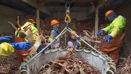 用生命去工作的阿拉斯加捕蟹人 工资超70万