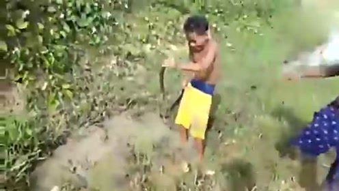 农村男孩野外游玩 意外发现这生物 整个人都乐了