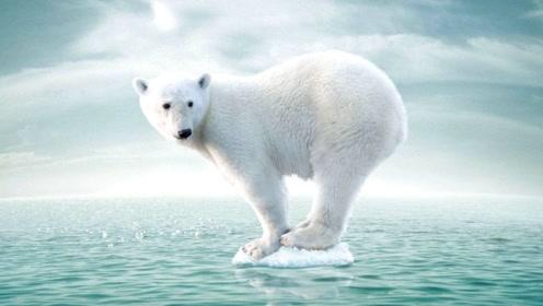有数据表明,若地球均温再升5度,人类文明将会消亡