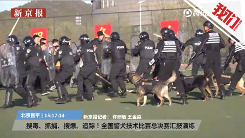 直播回看:搜毒、抓捕、排爆 中国最优秀的警犬都在这里了