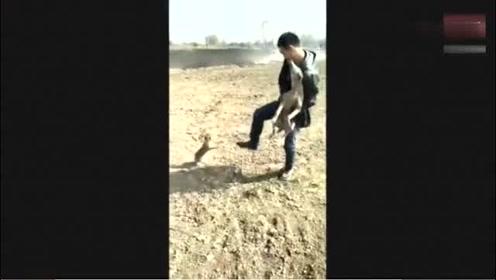 兔子急了真咬人,看把狗吓成什么样了