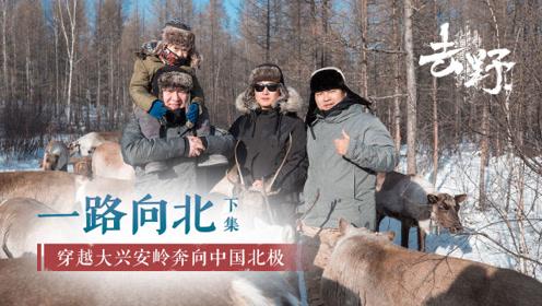 去野:一路向北-下集-穿越大兴安岭奔向中国北极