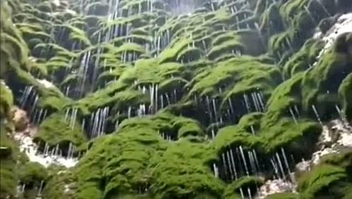 第一次见这样的瀑布,简直不要太美,超养眼!