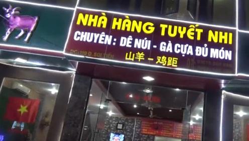 实拍越南的步行街,好多门店都是中越双语,看看你有去过吗?