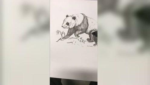 超简单!教大家四个步骤画熊猫,仔细看细节!