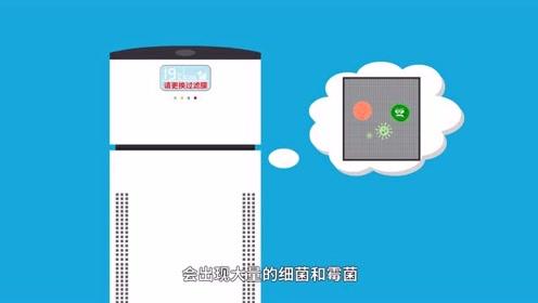 使用空气净化器真的有效果吗?
