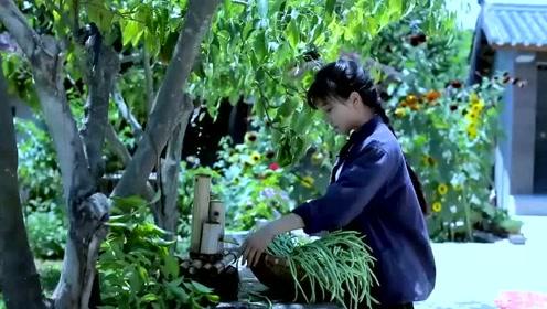 美食李子柒:诗一般的田园生活,晒干的豇豆炖肉,吃出浓浓幸福感!