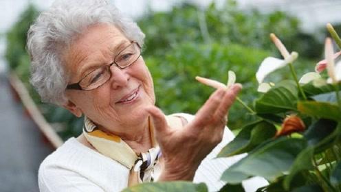 日本女性平均寿命87岁,为了长寿她们坚持做4件事,你做到了吗?