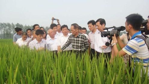 """""""水稻之父""""袁隆平,现在一个月能领多少钱?看完国人都沉默了"""