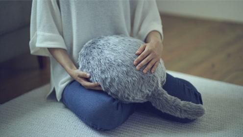 """日本""""无头猫""""售价1236万,有什么特别之处?网友:心动了"""