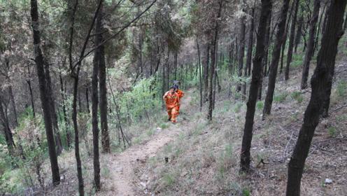 6旬夫妻扎根无人区守护森林29年:死到林场也自豪