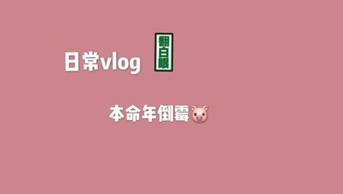 第二支vlog-本命年的倒霉猪