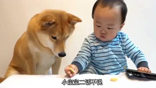 爸爸逗小宝宝玩,太呆萌可爱了,爸爸拿小饼干逗小宝宝