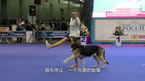 狗狗上台跳舞,从开始害羞的害羞到后来完全投入,太棒了!