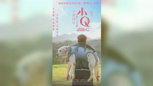 """电影《小Q》首曝MV 卢冠廷致敬""""一生所爱""""感动天下养狗人"""